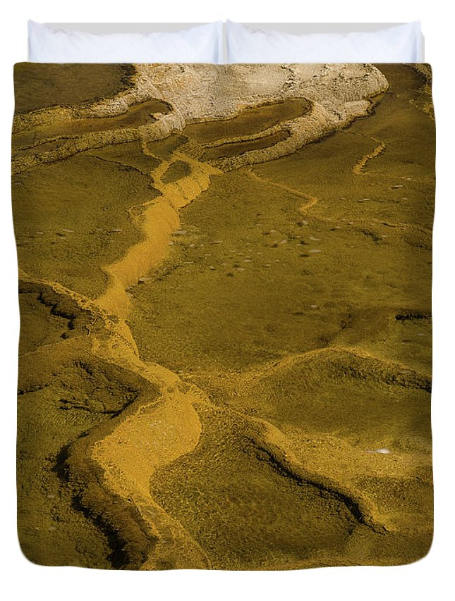 Minerva Terrace Duvet Cover featuring the photograph Minerva Terrace Detail 4 by Tracy Knauer