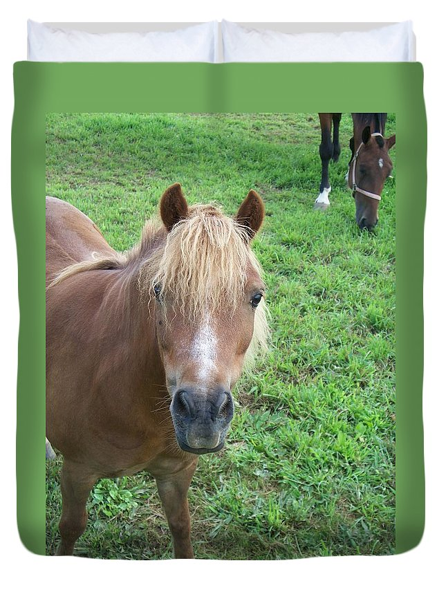 Miniture Duvet Cover featuring the painting Miniature Horse by Eric Schiabor