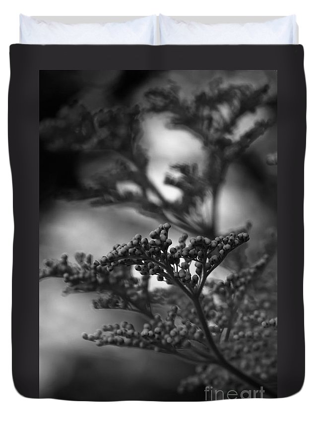 Silver Duvet Cover featuring the photograph Mirrored In Sterling by Linda Shafer
