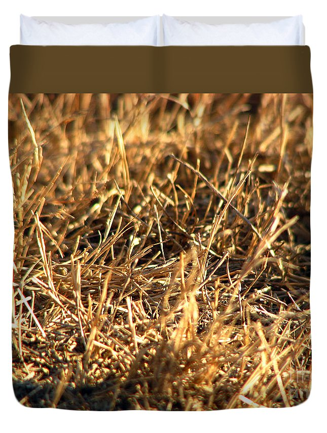 Grass Duvet Cover featuring the photograph Mirrors by Amanda Barcon