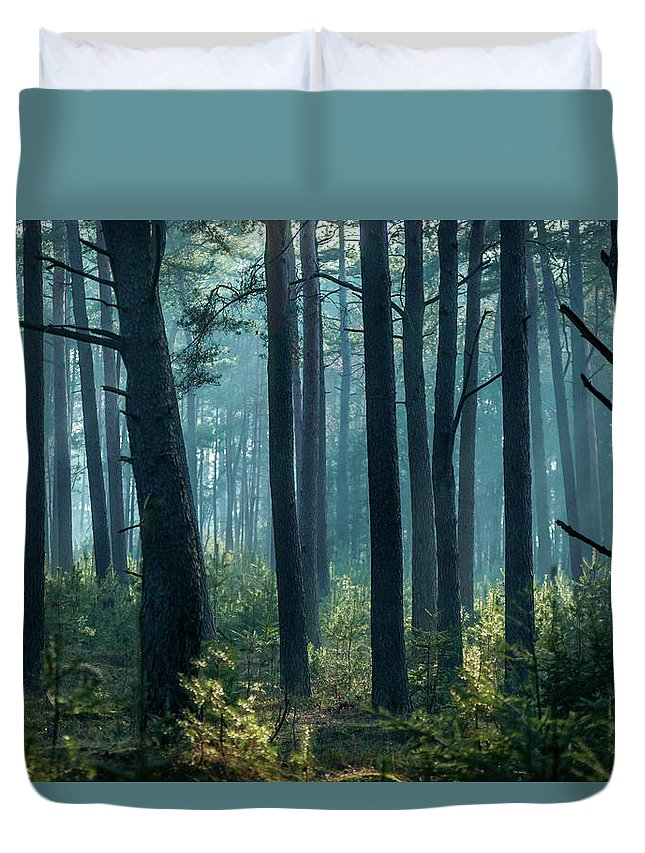 Forest Duvet Cover featuring the photograph Misty Forest by Alexandre Rotenberg