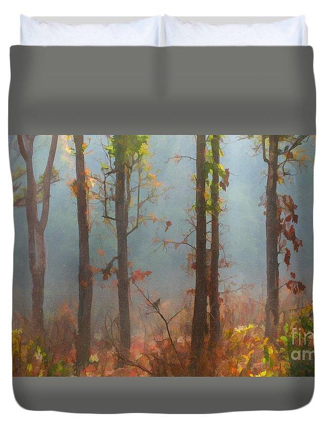 Morning Duvet Cover featuring the digital art Misty Indian Morning by Liz Leyden