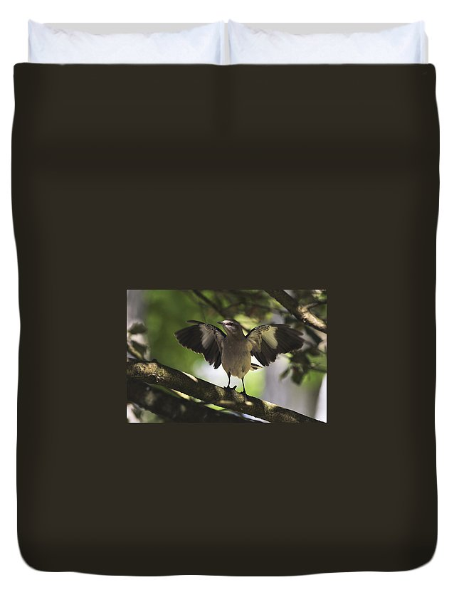 Terry D Photography Duvet Cover featuring the photograph Mockingbird by Terry DeLuco