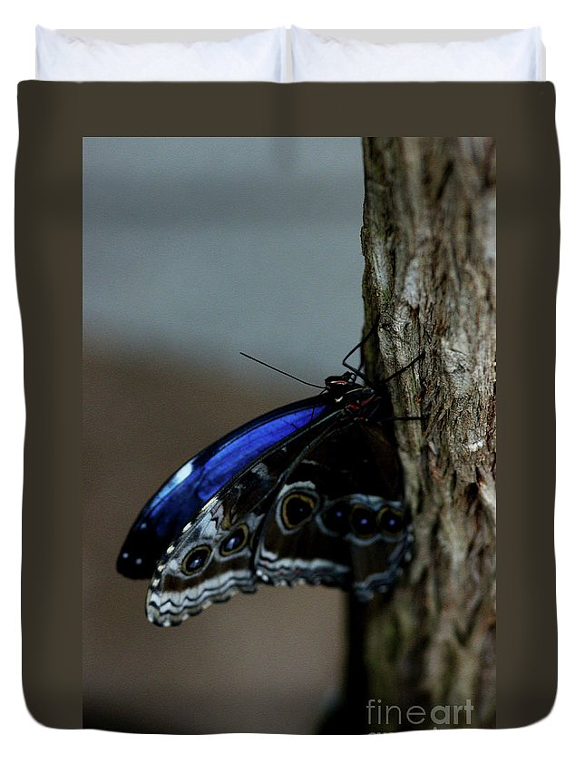 Iridescent Duvet Cover featuring the photograph Moment Of Calm by Linda Shafer