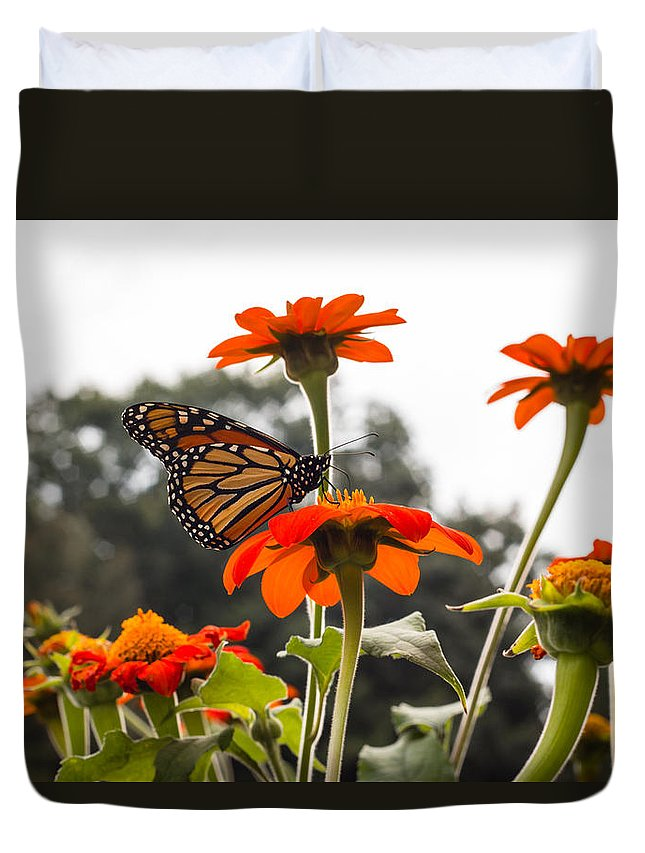 Flower Duvet Cover featuring the photograph Monacrch Butterfly On A Flower by Connor Koehler