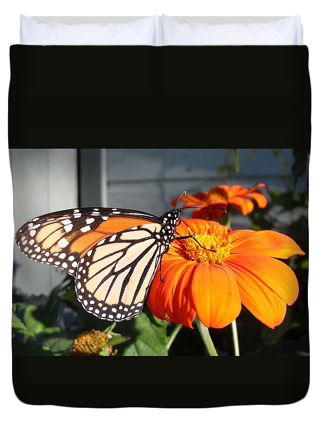 Butterfly Duvet Cover featuring the photograph Monarch Butterfly 2 by June Goggins