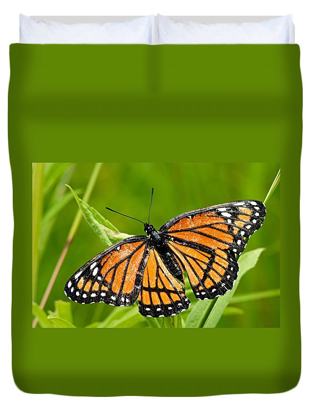 Monarch Butterfly Duvet Cover featuring the photograph Monarch Butterfly by Larry Ricker