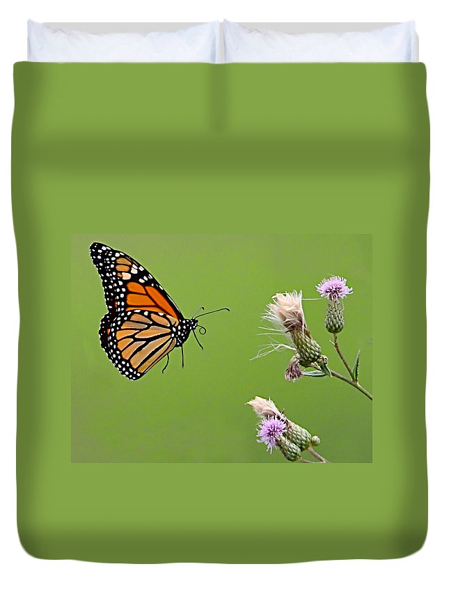 Butterfly Duvet Cover featuring the photograph Monarch Butterfly by William Jobes