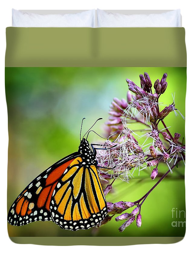 Monarch Duvet Cover featuring the photograph Monarch by Lois Bryan