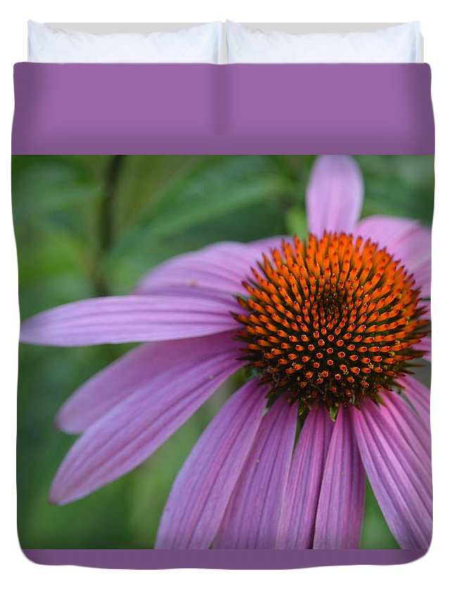 Purple Duvet Cover featuring the photograph Monarda by Tim Votapka