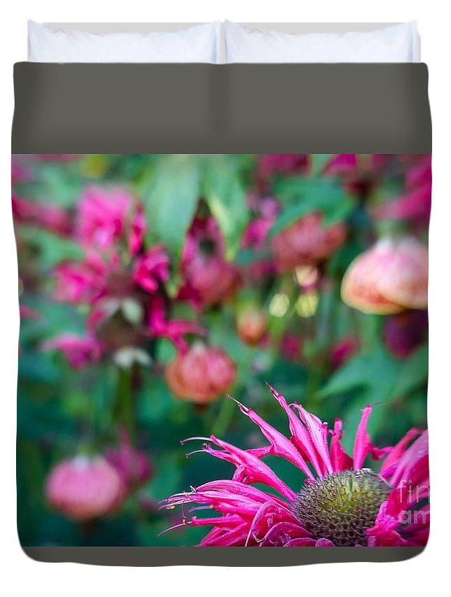 Abutilon Duvet Cover featuring the photograph Monardia And Abutilon 1 by Jill Greenaway
