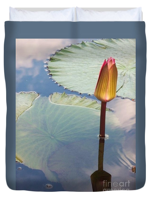 Photograph Duvet Cover featuring the photograph Monet Water Lily Stem Red Orange by Eric Schiabor