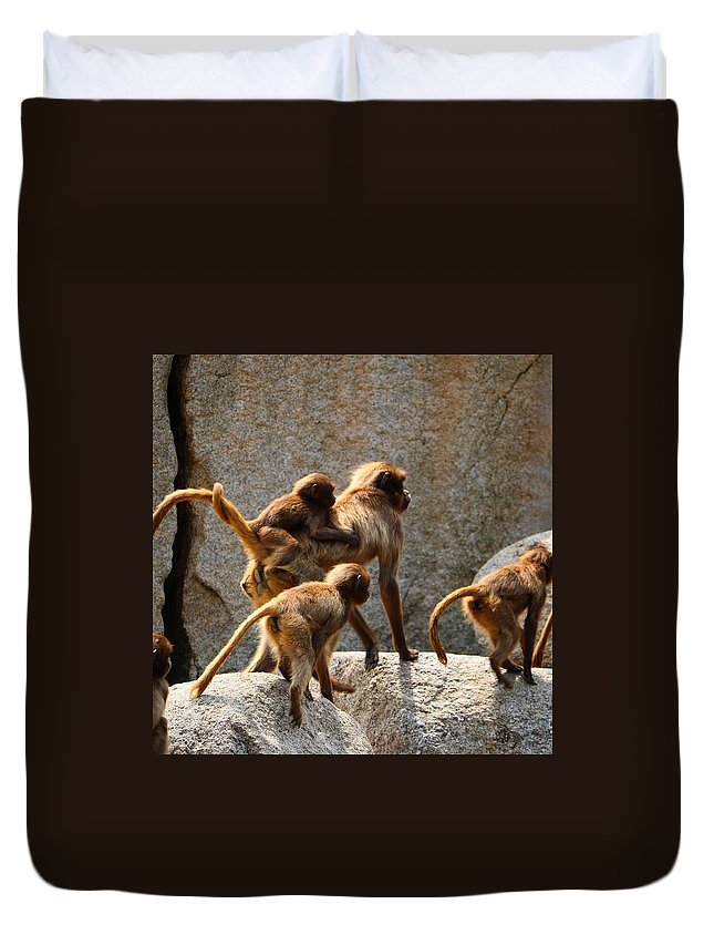 Protection Photographs Duvet Covers