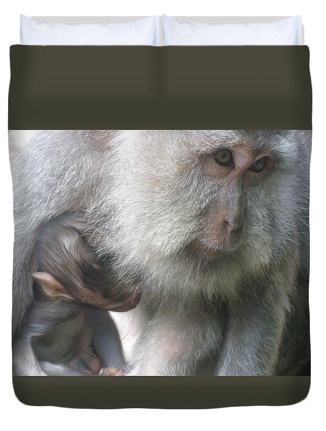 Bali Duvet Cover featuring the photograph Monkey Mother 3 by Mark Sellers
