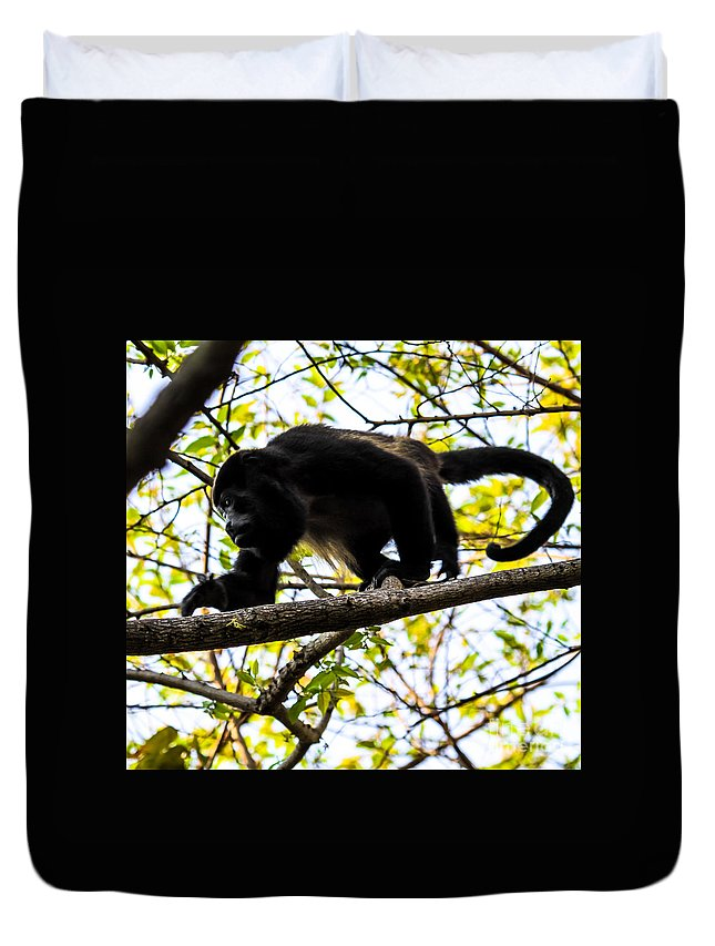 Black-face Monkey Duvet Cover featuring the photograph Monkey2 by Olga Photography