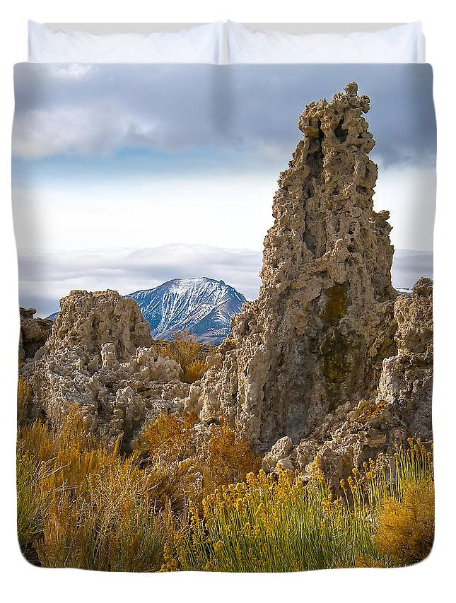 California Duvet Cover featuring the photograph Mono Lake California by Waterdancer