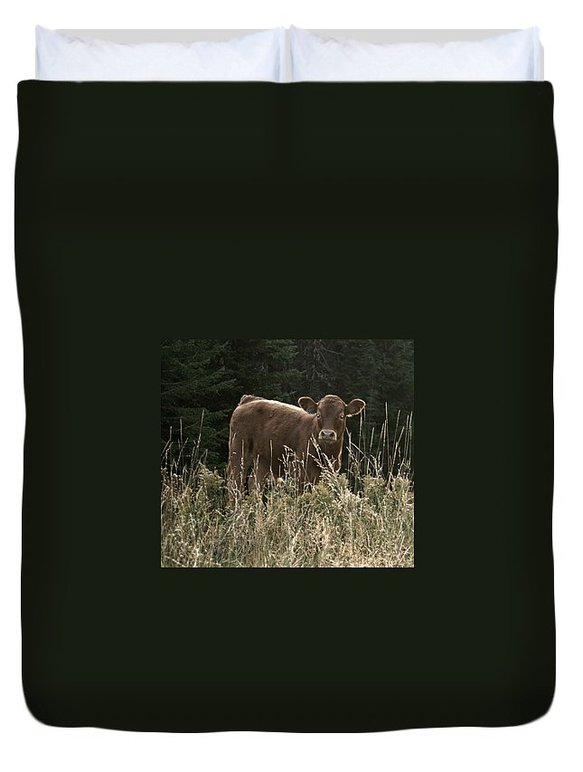 Calf Duvet Cover featuring the photograph MOO by Tiffany Vest