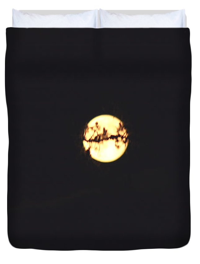 Moon Trees Night Dark Sky Branches Lonely Love Hug Duvet Cover featuring the photograph Moon Wrapped by Andrea Lawrence