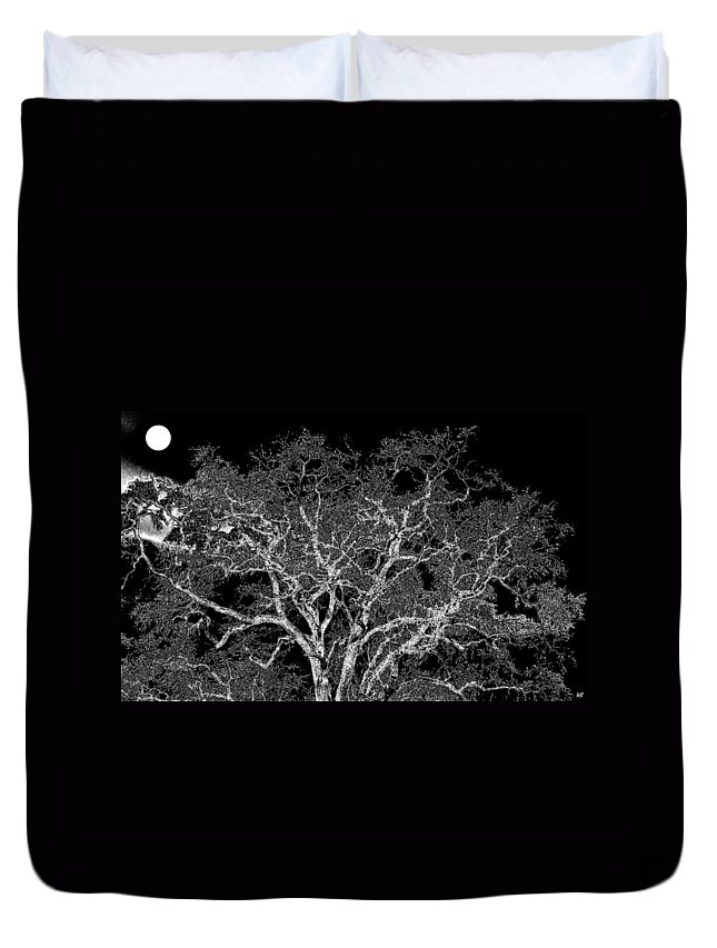 Photo Design Duvet Cover featuring the digital art Moonlit Night by Will Borden