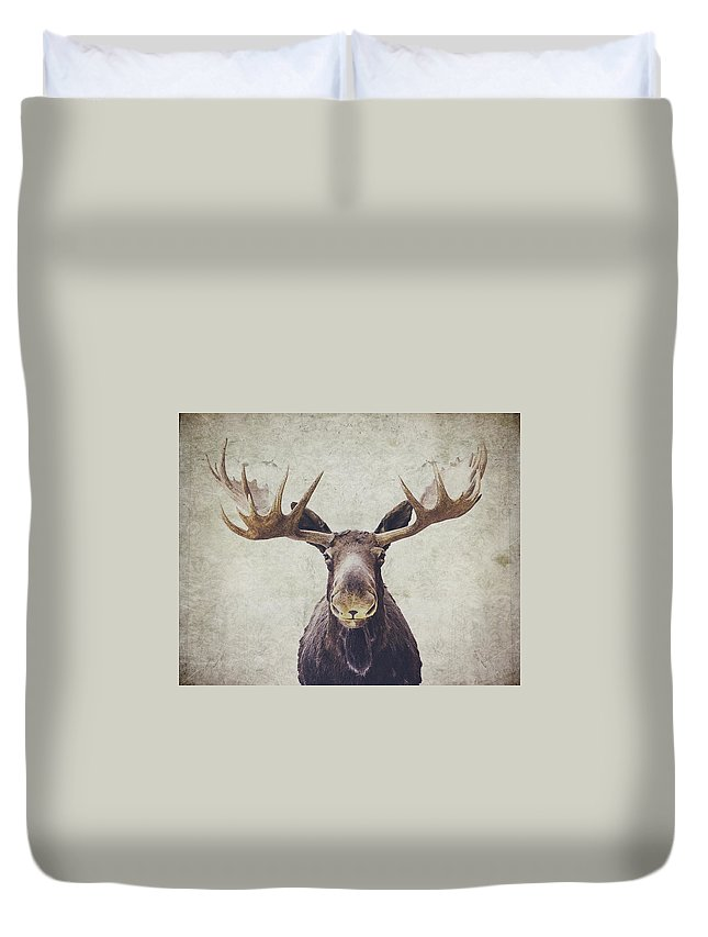 Moose Duvet Covers