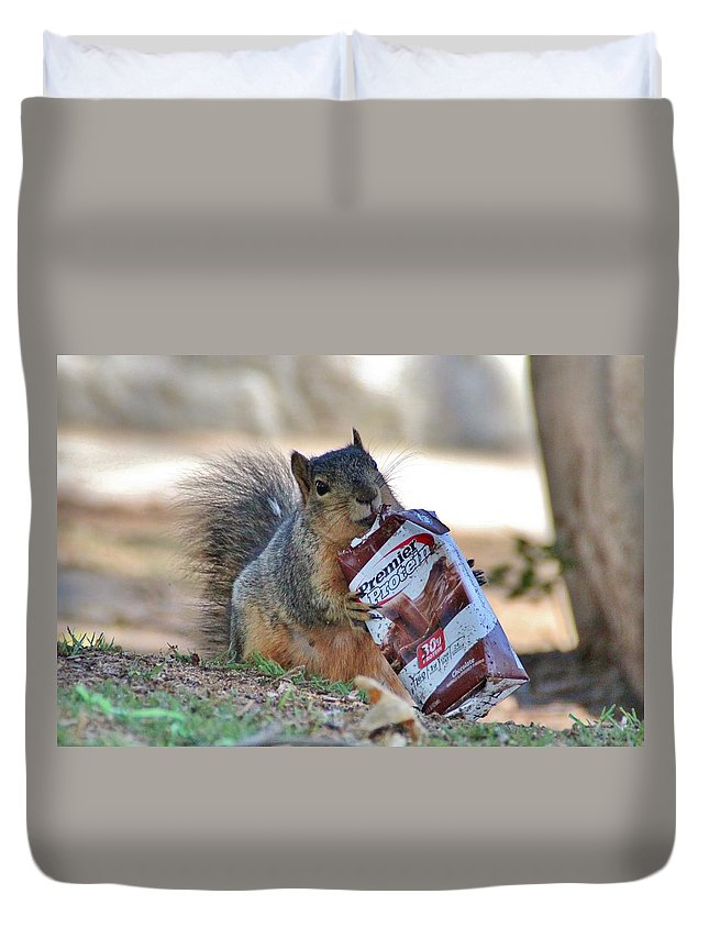 Squirrel Duvet Cover featuring the photograph Morning Boost by Debra Farrey