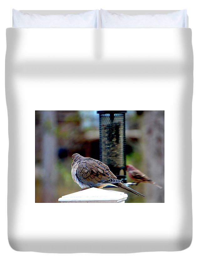 Doves Duvet Cover featuring the photograph Morning Dove by Beth Deitrick