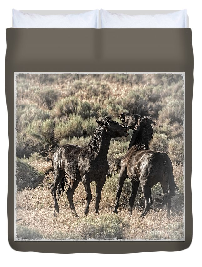 Morning Dust Up Duvet Cover featuring the photograph Morning Dust Up by Mitch Shindelbower