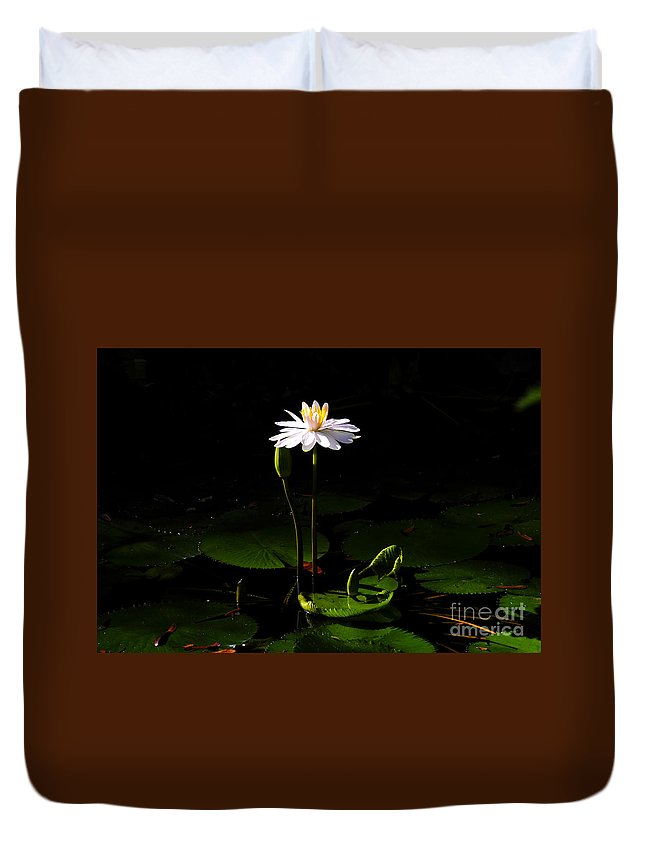 Morning Duvet Cover featuring the photograph Morning Glory by David Lee Thompson