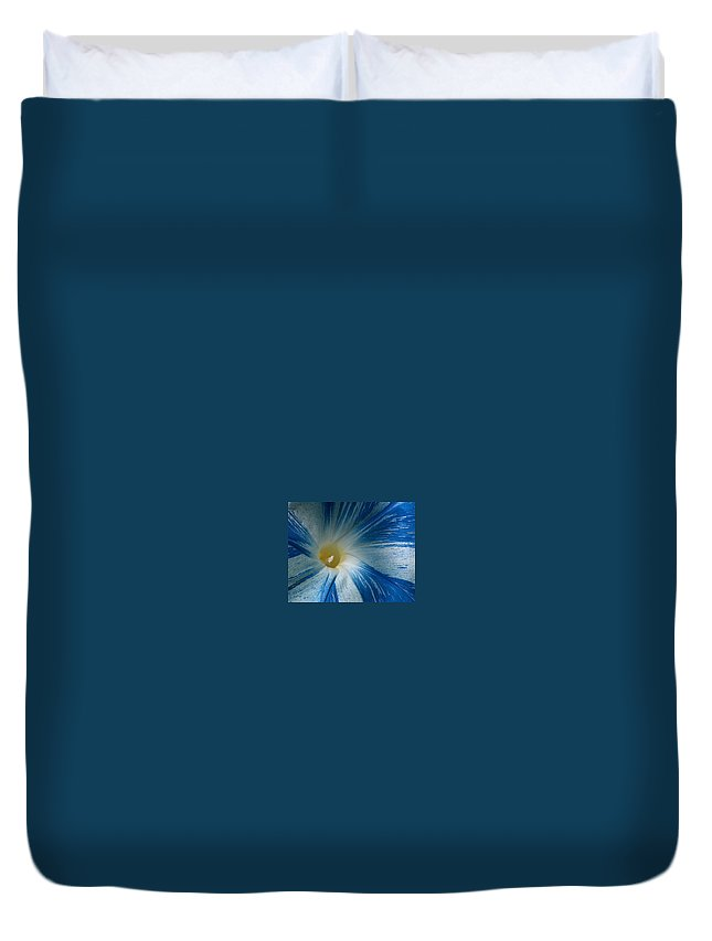 Morning Glory Duvet Cover featuring the photograph Morning Glory by Racquel Morgan