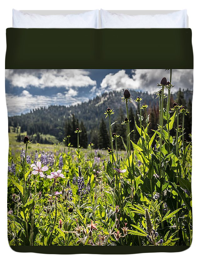 Wildfowers Duvet Cover featuring the photograph Morning Glow by Jessica Croxford