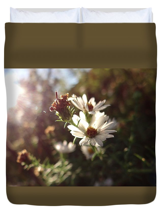 Flower Duvet Cover featuring the photograph Morning Light by Amy Kobylarczyk