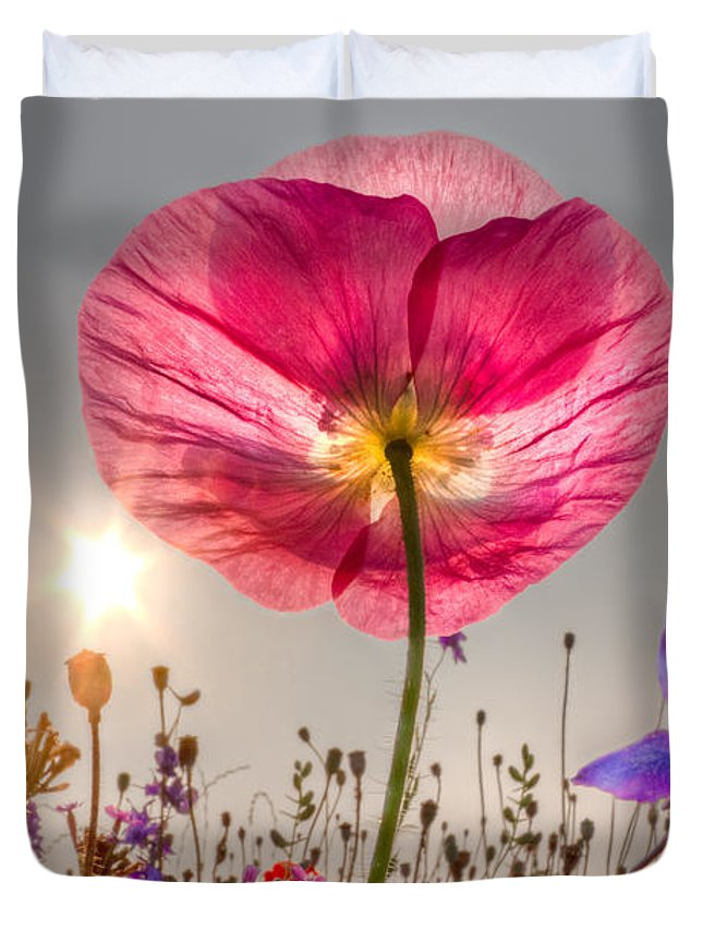 Fog Duvet Cover featuring the photograph Morning Pink by Debra and Dave Vanderlaan