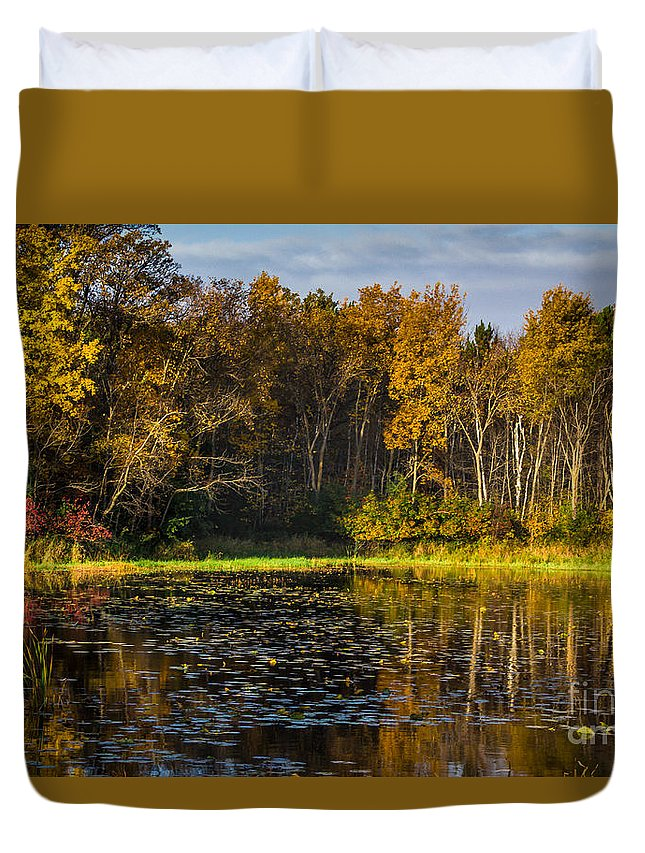 Pond Duvet Cover featuring the photograph Morning Sun by CJ Benson