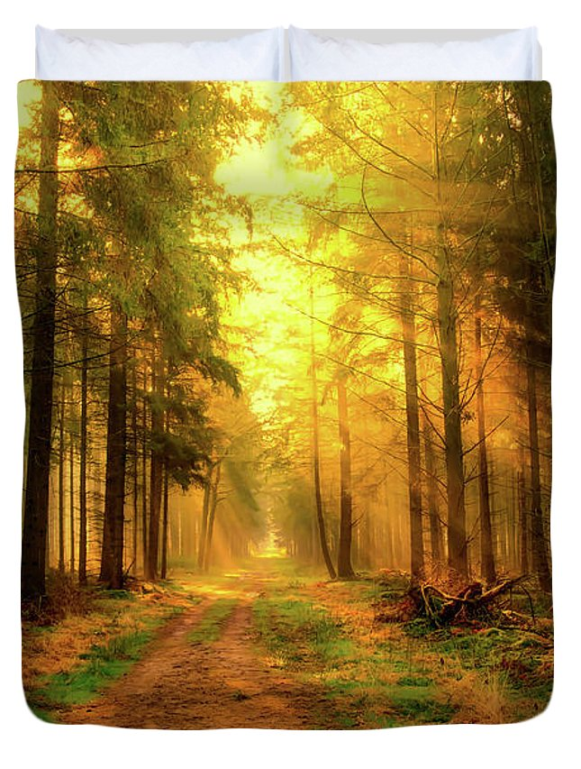 Sunrise Duvet Cover featuring the photograph Morning Sunshine by Skitterphoto