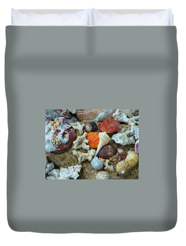 Shells Duvet Cover featuring the photograph Morning Treasures by Peggy King