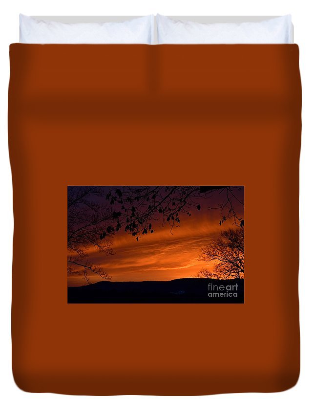 Morning Duvet Cover featuring the photograph Morning's Glory by Julie Street