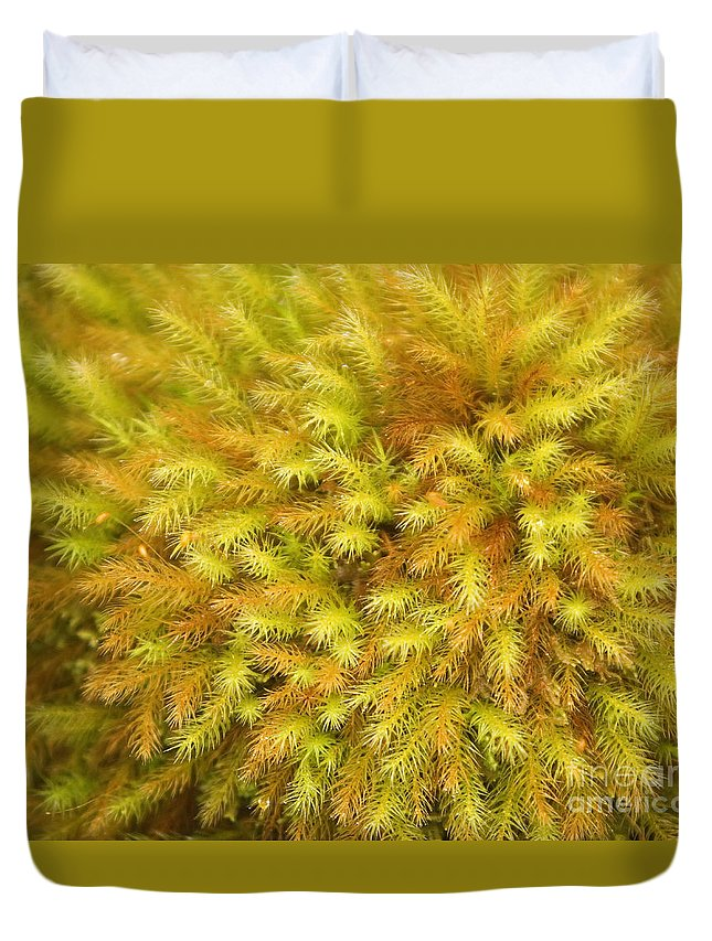 Abstract Duvet Cover featuring the photograph Moss Abstract by Ron Dahlquist - Printscapes