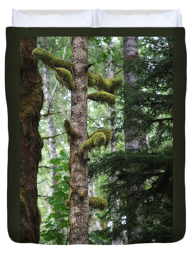 Moss Duvet Cover featuring the photograph Moss-draped Trees On Tiger Mountain Wt Usa by Christine Till