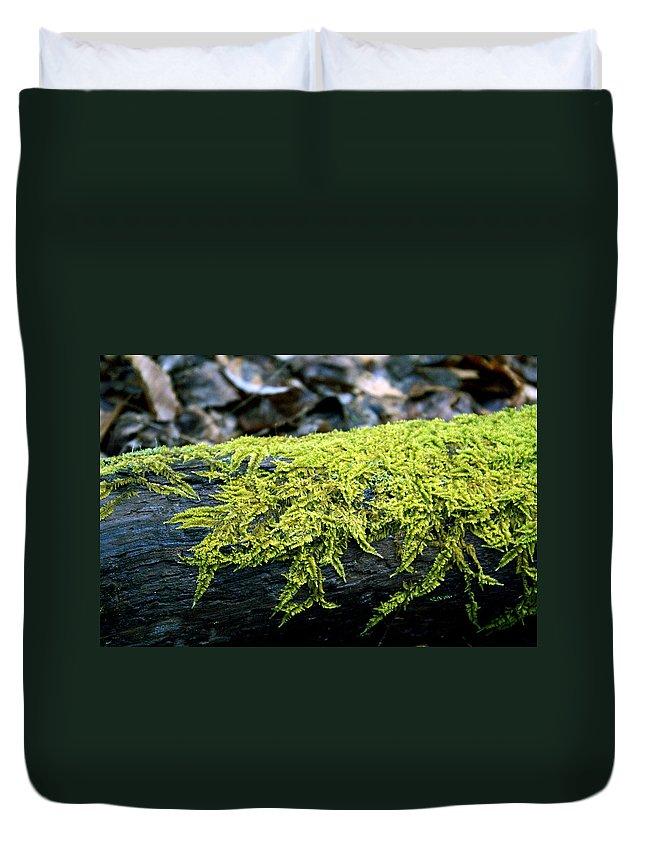 Moss Duvet Cover featuring the photograph Mosss On Blackened Log by Douglas Barnett