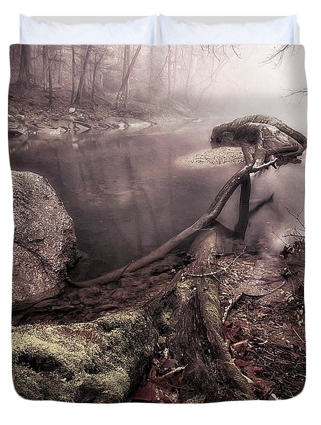 Strean Duvet Cover featuring the photograph Mossy Log by Todd Wall