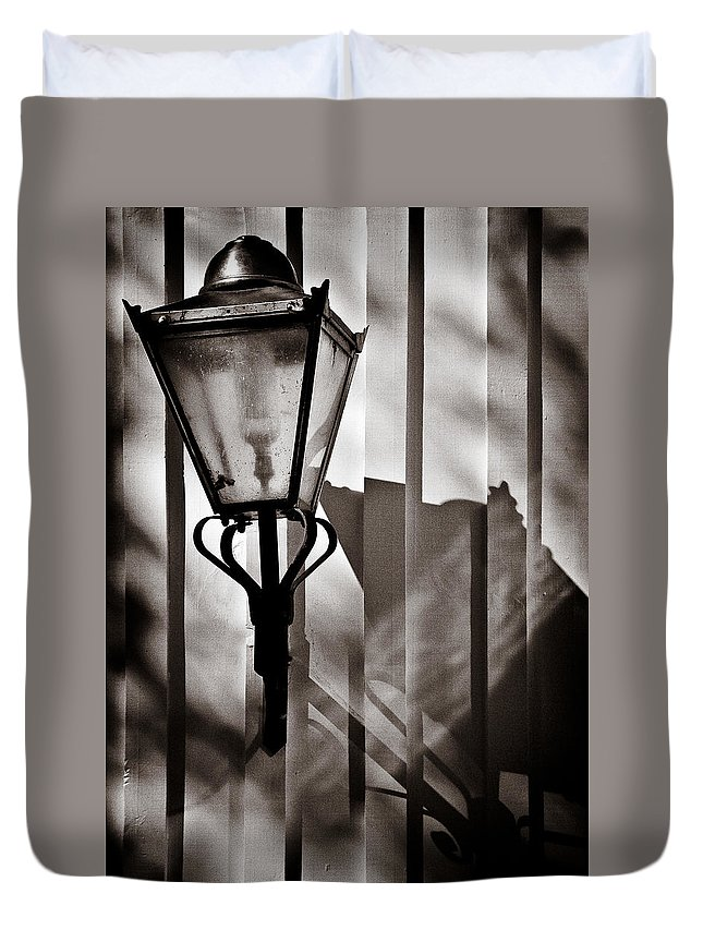 Moth Duvet Cover featuring the photograph Moth And Lamp by Dave Bowman