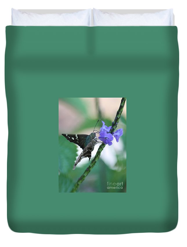 Nature Duvet Cover featuring the photograph Moth On Blue Flower by Carol Groenen