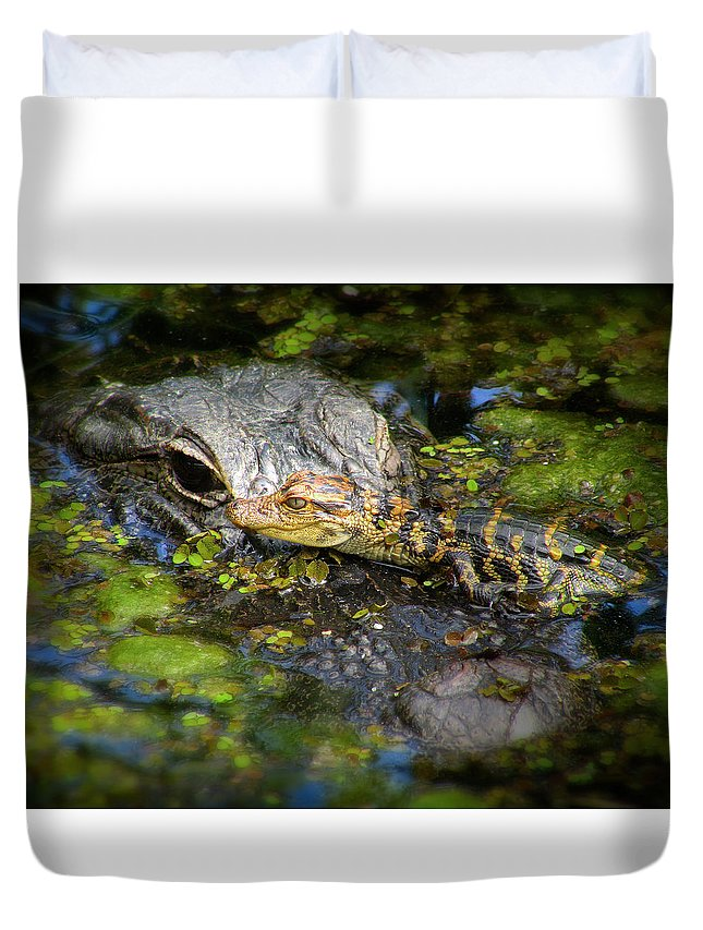 Alligator Duvet Cover featuring the photograph Mother And Baby by Mark Andrew Thomas