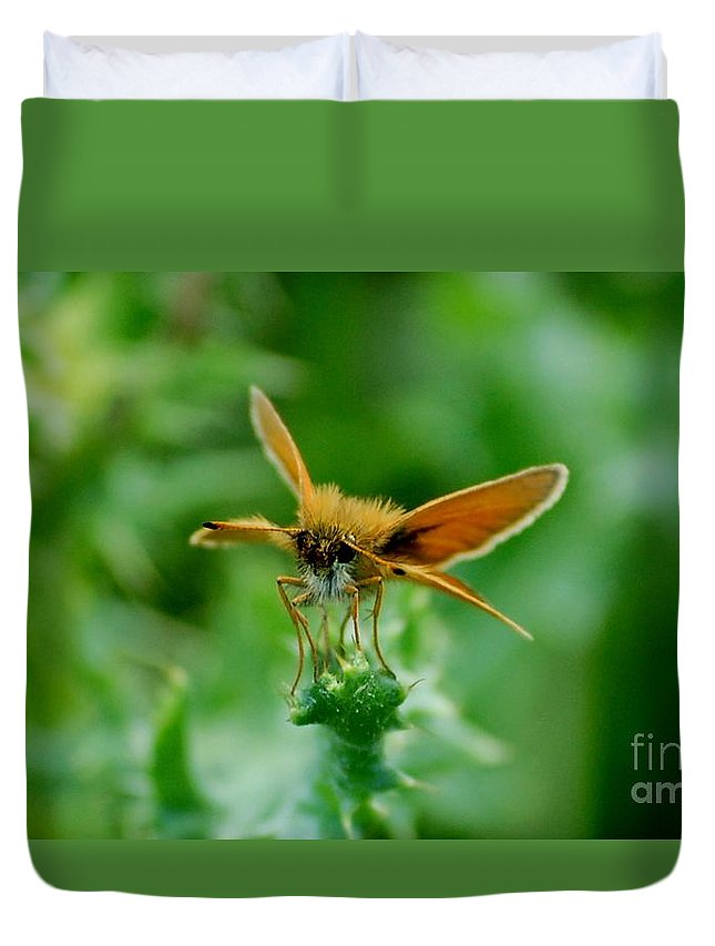 Landscape Duvet Cover featuring the photograph Mothera by David Lane