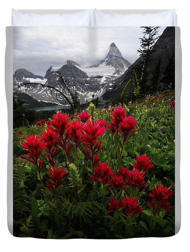 Mount Assiniboine Duvet Cover featuring the photograph Mount Assiniboine Canada 11 by Bob Christopher