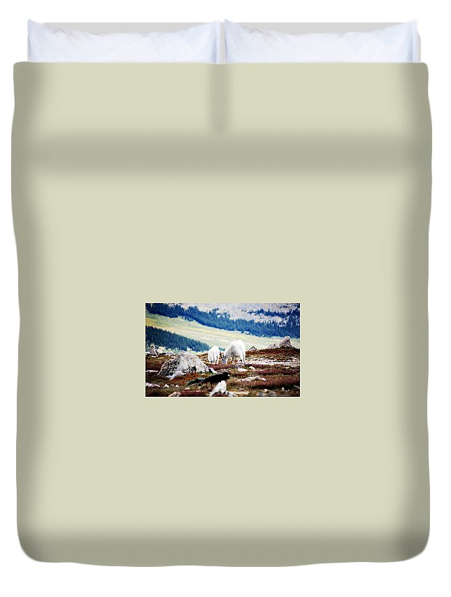 Animal Duvet Cover featuring the photograph Mountain Goats 2 by Marilyn Hunt