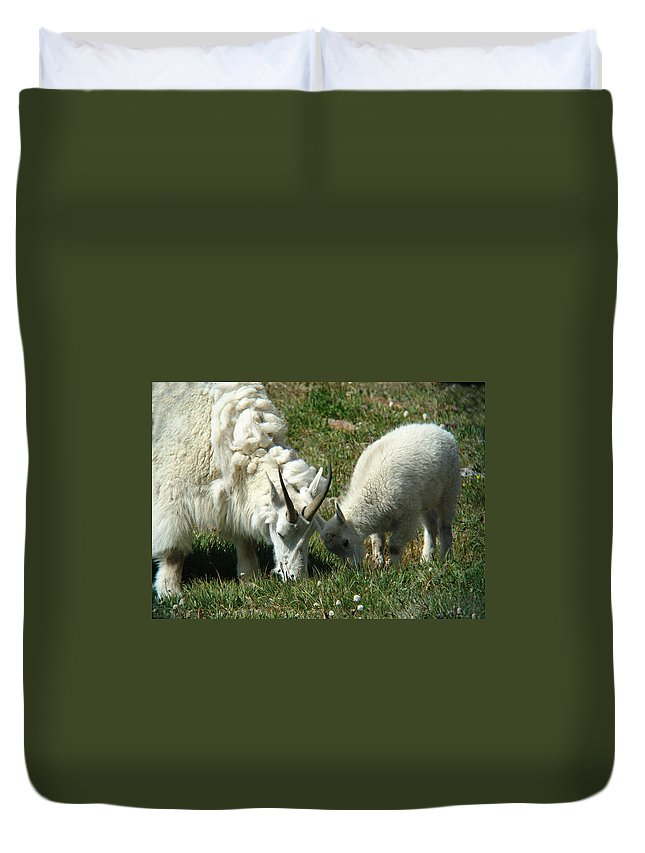 Goats Duvet Cover featuring the photograph Mountain Goats by Carol Milisen