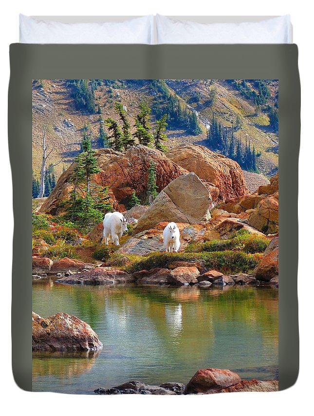Mountain Goats Washington State Cascade Mountain Range Lake Ingalls Duvet Cover featuring the photograph Mountain Goats In Early Fall by Daniel Mazzei