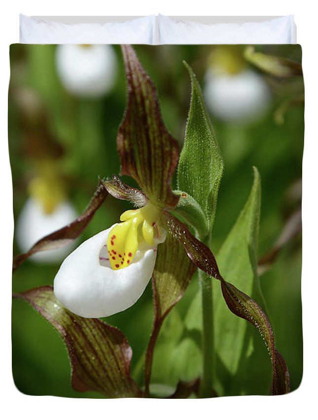 Mountain Duvet Cover featuring the photograph Mountain Lady Slippers Up Close by Whispering Peaks Photography