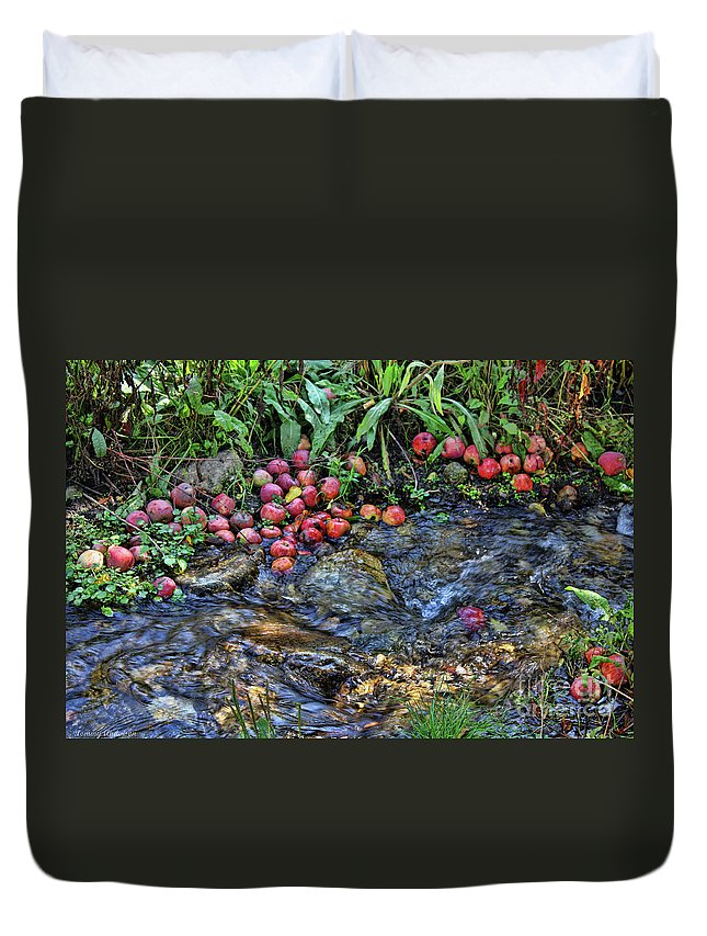 Stream Duvet Cover featuring the photograph Mountain Stream In Oak Glen by Tommy Anderson